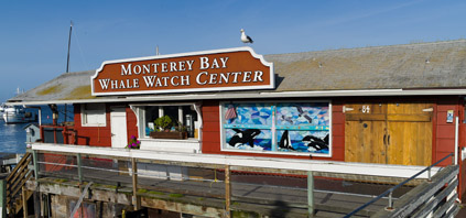 Monterey Bay Whale Watch Center, photo by Sebastian Gorgol
